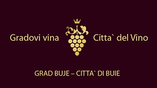 Gradovi vina